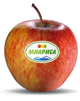 Pinova